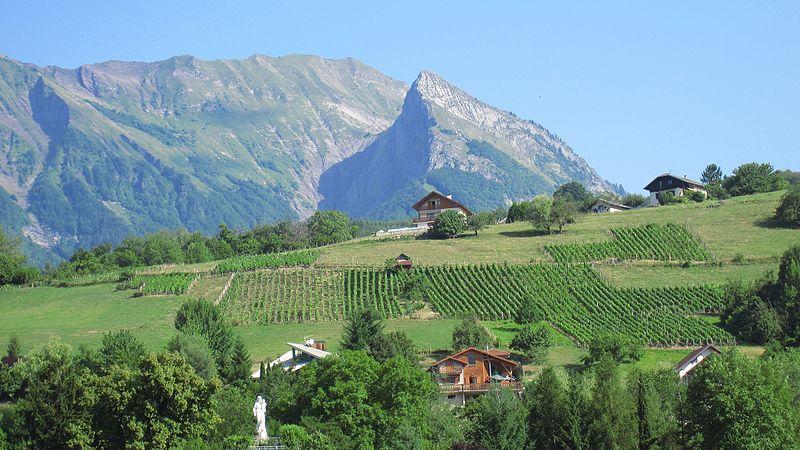 Terrain à vendre en Savoie - Avant Pays Savoyard - Aiguebelette le lac